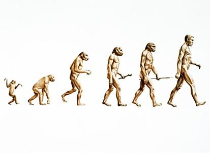 nc_evolution_080103_ms